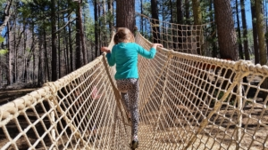 L, exploring a rope bridge.